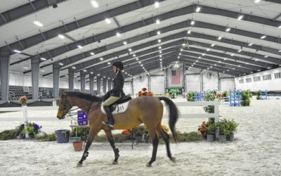 VIP Tours of the World Equestrian Center